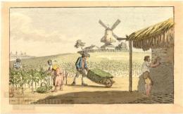 Radierung von Christian Gottfried Heinrich Geißler, 1810